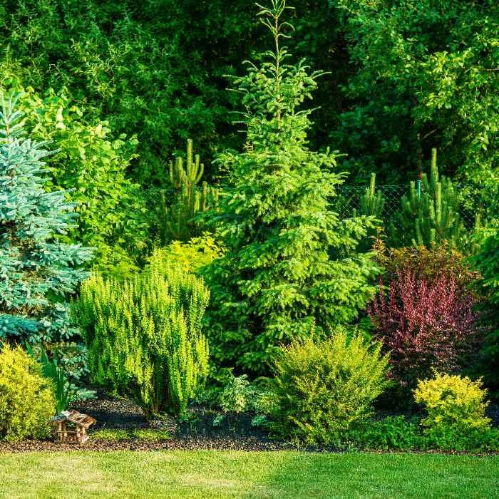 Arboréa Paysage - Entretien de jardin